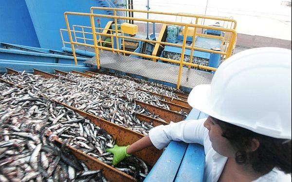 Según Comex, los Acuerdos Comerciales han favorecido las exportaciones de agricultura y pesca.