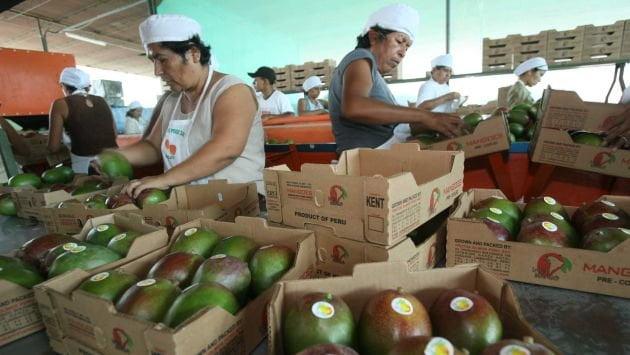 La subpartida de mangos frescos representó el 66% de los envíos totales del producto en sus diferentes presentaciones.