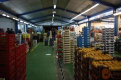 Europa es el principal importador de frutas y hortalizas frescas peruanas.