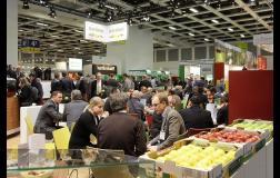 Noventa empresas agroindustriales peruanas participarán en Fruit Logistica de Alemania.