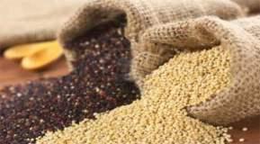 Productos como la quinua tienen gran potencial para ser exportado al mercado italiano.