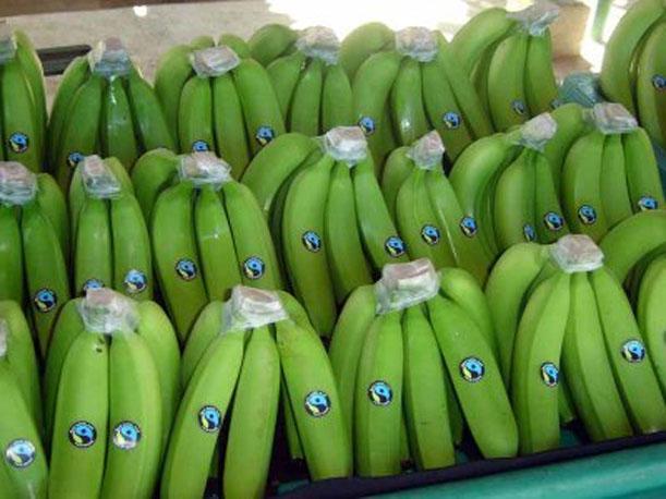 Las bananas nacionales generaron un crecimiento de casi 20% entre enero y marzo.