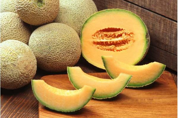 El melón es uno de los nuevos productos lambayecanos que se viene exportando.