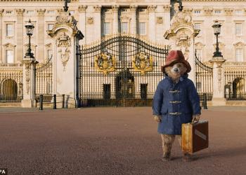 [VIDEO] Paddington, el oso peruano, que estrenará película en Navidad