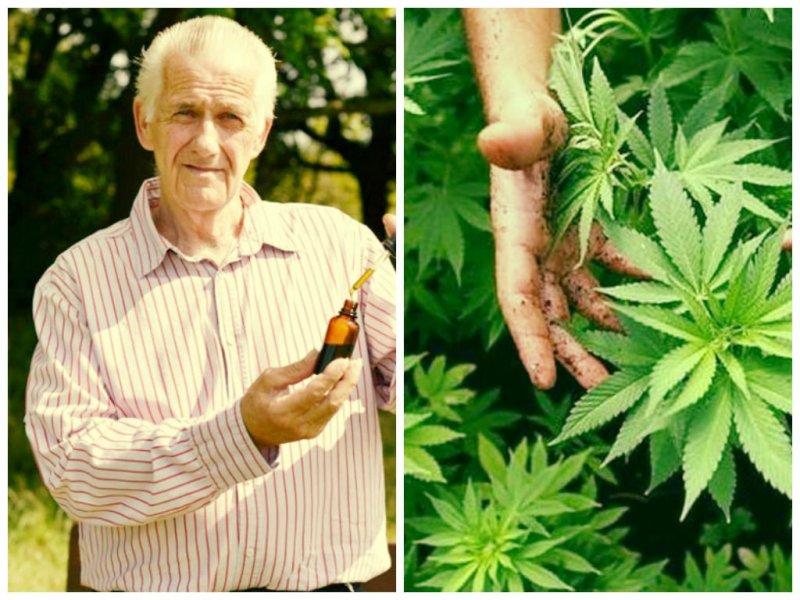 Increíble: Asegura que se curó de cáncer al hígado con aceite de marihuana