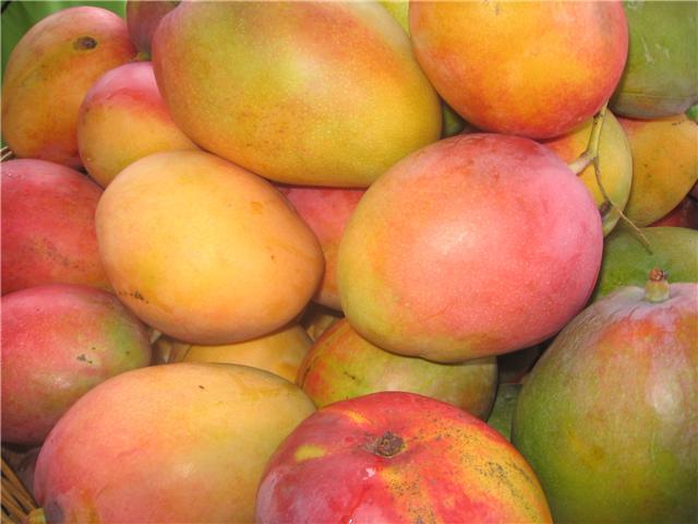 El mango peruano arribará próximamente a Rusia.