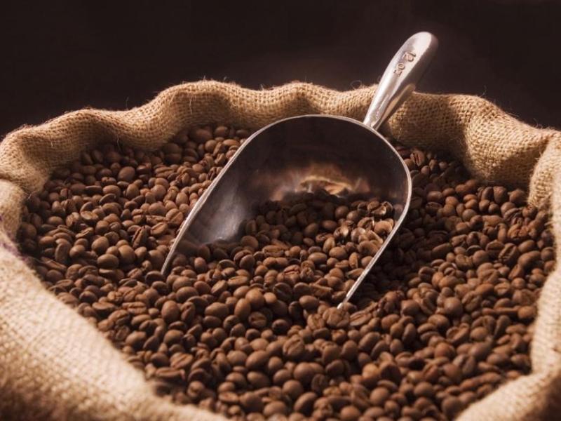 El café – producto tradicional – lideró las exportaciones del subsector agro nacional.