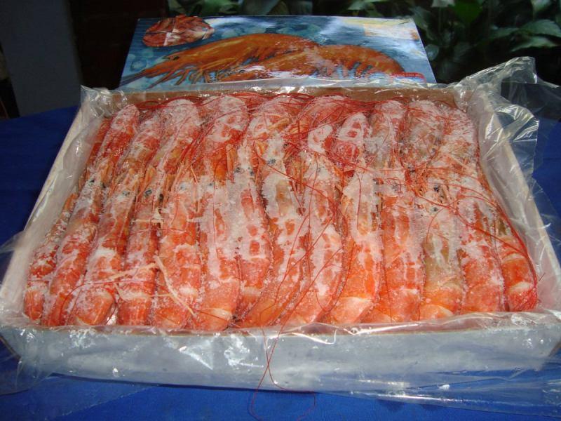 Los langostinos lideraron las exportaciones acuícolas.