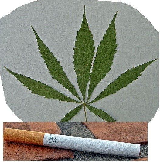 La marihuana es menos peligrosa que el alcohol y el tabaco