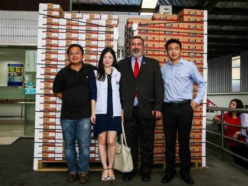 La palta peruana se comercializará por primera vez en China.