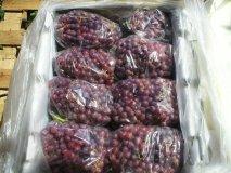 La uva de mesa peruana es una de las favoritas del consumidor hindú.