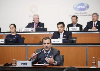 Bruno Giuffra participó en la reunión de ministros de Pyme APEC.