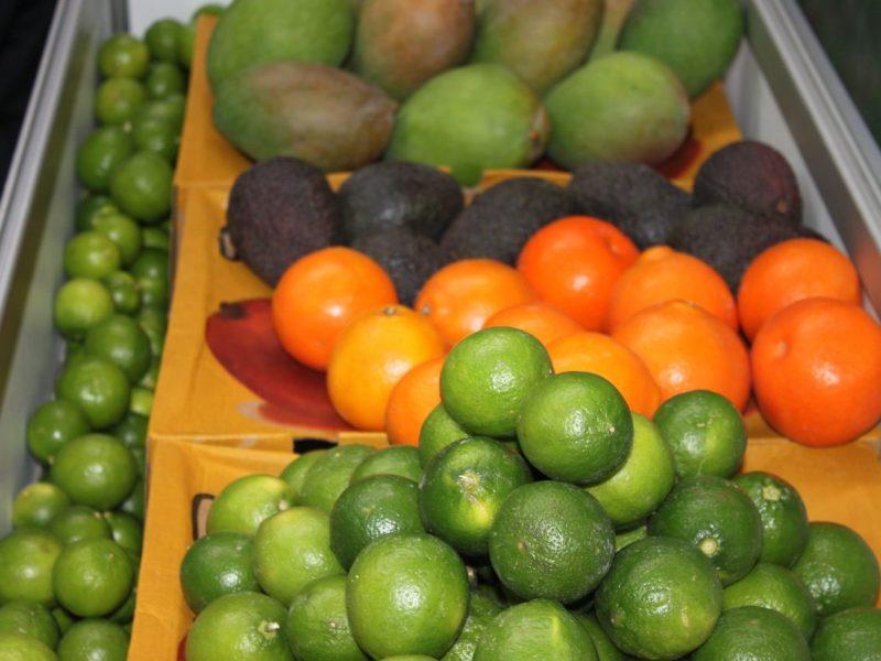 Piura impulsará sus frutas, verduras y productos pesqueros en la Expoalimentaria.