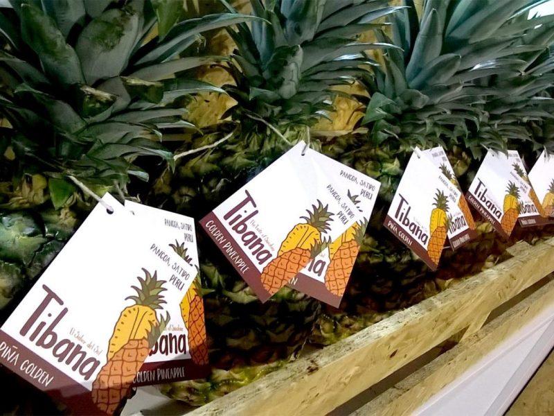 Productores de Pangoa venden piña al mercado español.