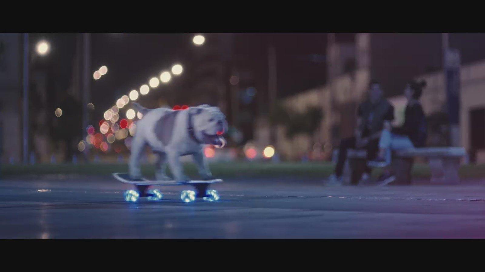 El spot que protagoniza el bulldog. | Fuente: Facebook / Made Visible