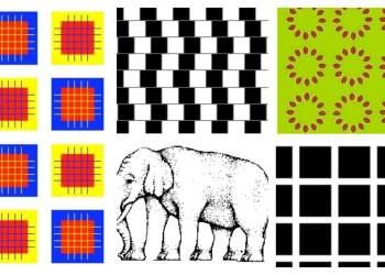 Desafío visual: 5 ilusiones ópticas para poner a prueba el cerebro