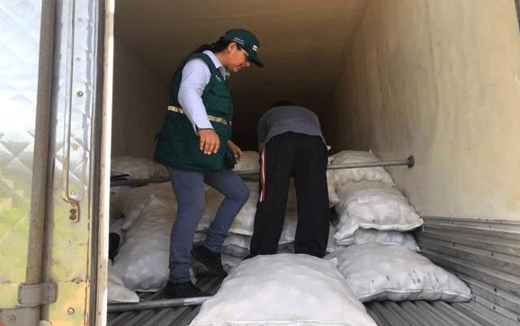 Perú exporta papa al Brasil