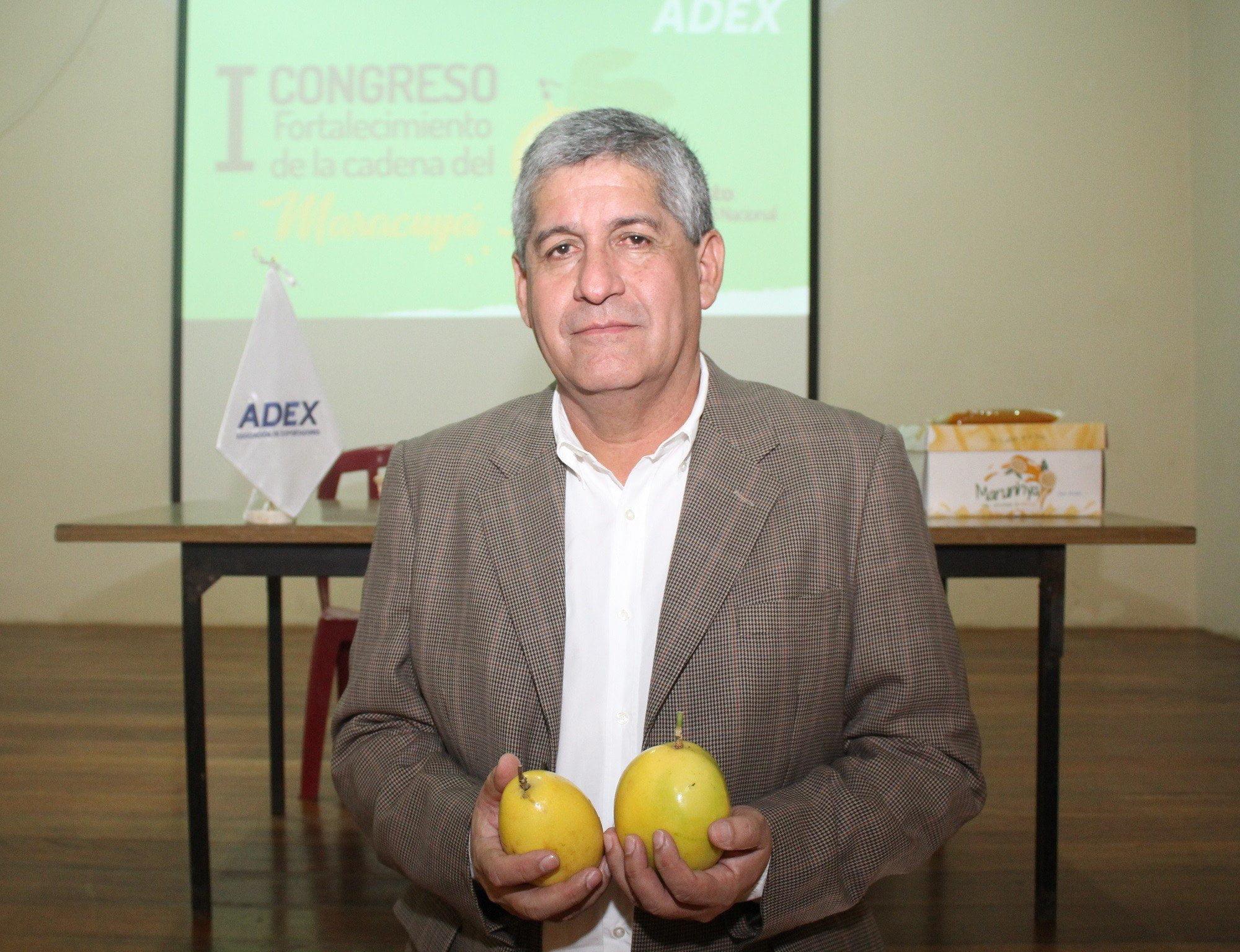 Vocero del Grupo de Trabajo de Frutas para la Industria de la Asociación de Exportadores (ADEX), Renzo Gómez Moreno.