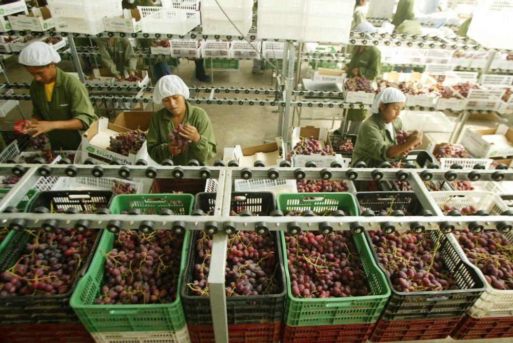 Adex: exportaciones con valor agregado a China sumaron US$ 229 millones