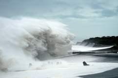 Impactantes videos: Tifón Hagibis deja 18 muertos en Japón