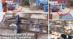 Indignante: hombre robó ocho perros para plato especial de su restaurante