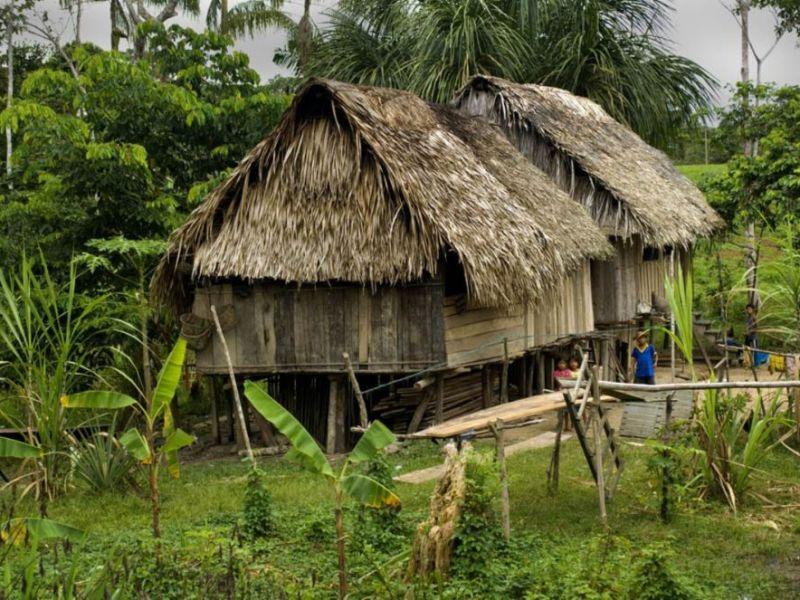 """Alternativas para el """"buen vivir"""" en la Amazonía"""