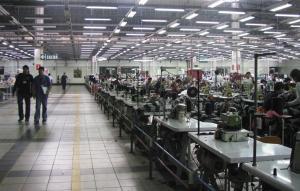Adex: Exportadores piden marco legal de neutralidad y acabar 'círculo perverso'