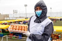 Productores de huevos