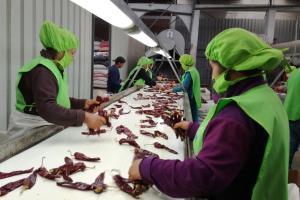 Adex: Exportación de páprika peruana se redujo -5%