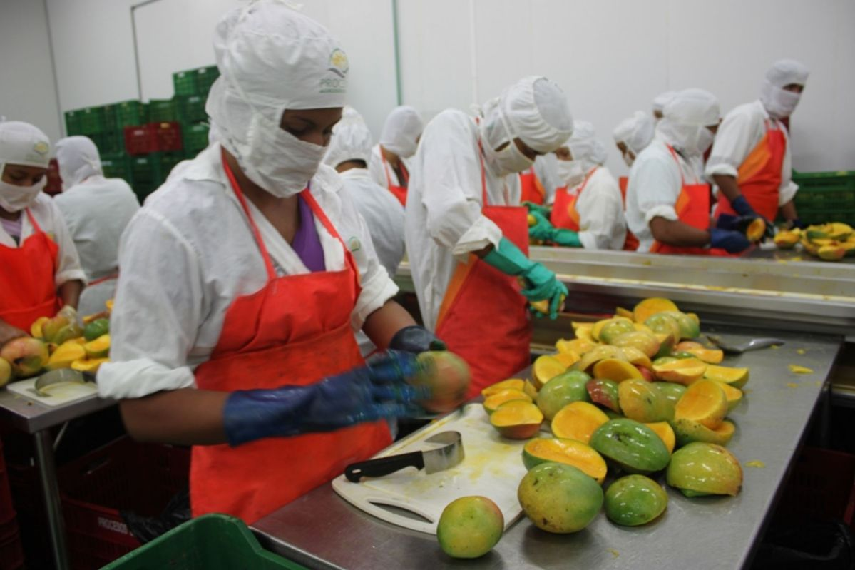 Agro exportaciones del Perú
