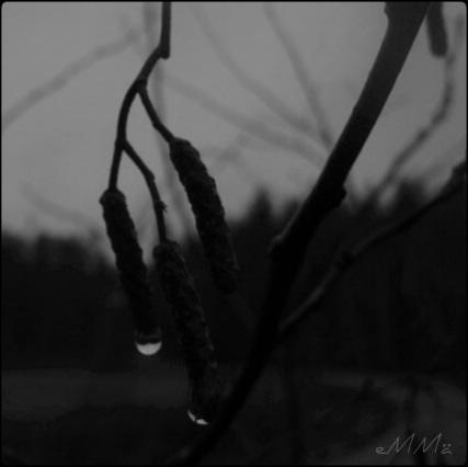 mustavalkoinen hämärä
