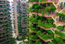 Photo of هل يخفق مشروع الغابة العمودية في الصين بسبب البعوض؟