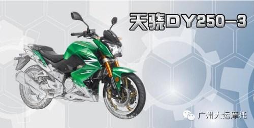 Dayun DY250-3