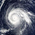 NHKニュースの台風予報がちょっとしたゴッホ