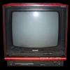 テレビ見てたらテレビの裏からひょこひょこ出てきた。可愛すぎ!