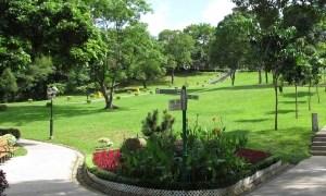 公園や河川敷でよく見るアレ、まさかの折りたたみ式だった😮