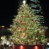 【衝撃】ドーナツで作ったクリスマスツリーだと思ったら…まさかの!