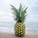 それは「パイナップル」という商品名を消してまで伝えたい事なのかwww