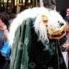 渋谷で獅子舞の格好してるネコが歩いててかなりときめいた😆