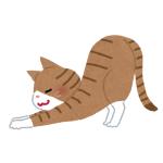 """うちの猫の""""伸び""""がやたらと人間くさいんだがwww"""