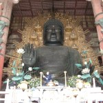 早朝の奈良でとんでもない場面に遭遇した…😱