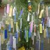 立て看板を禁止された京大生、「この季節ならでは」の対抗策に出るw
