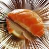 「素人と職人が握った寿司、どちらが強風に耐えうるのか!?」という外国の実験がシュールすぎるw