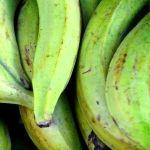 謎が謎を呼ぶ…「調理用バナナ」を使ったドミニカ共和国の料理レシピが意味不明すぎると話題に