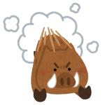 「なんとタイムリーな…」浜松の歩道を野生のイノシシが疾走🐗
