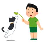 """「人間より上手いかも…」まるで人間のように猫を""""じゃらす""""犬が話題に"""