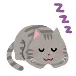 【尊い】赤ちゃんと猫の寝相、シンクロ率が高すぎるwww