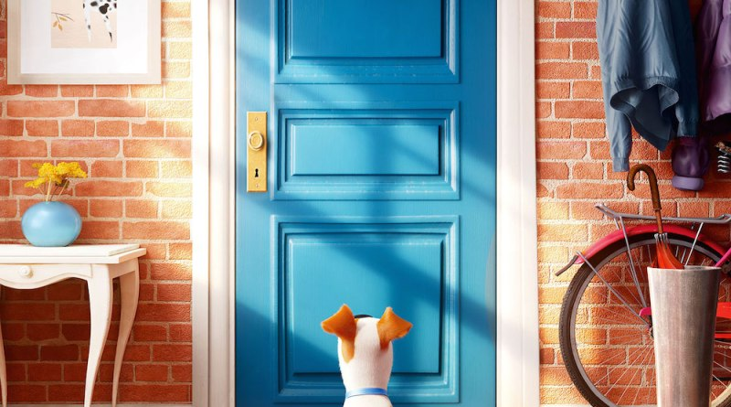 Film Terbaru 2016 The Secret Life of Pets
