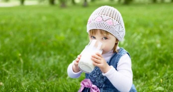 Susu untuk Anak