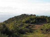 Από τον δασώδη λόφο τής Σαρωνίδας